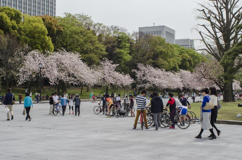 Tokyo - Imperial Garden
